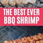 Grilled shrimp collage