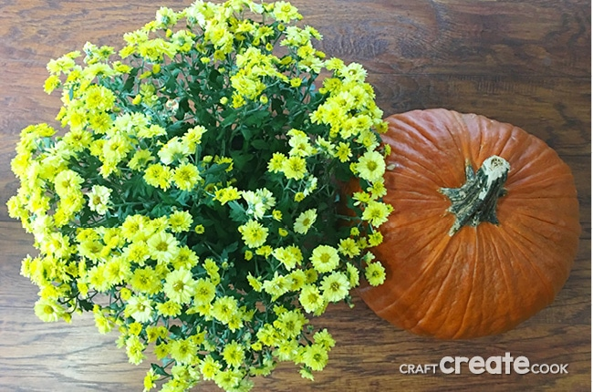 If you're like me and love decorating for different seasons and holidays, you'll want to make this adorable Pumpkin Vase for your house and front porch or give it as a gift.
