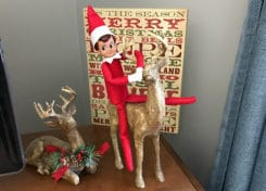 Looking for Elf on the Shelf ideas? These ideas are fun, easy and don't take a whole lot of time!