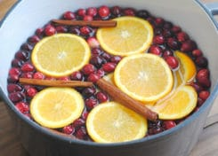 Make your home smell heavenly this holiday season with our homemade cranberry, orange & clove stovetop potpourri!