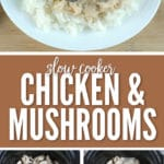 This slow cooker chicken & mushrooms recipe is perfect for a busy week night meal!