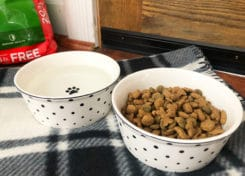Who Makes American Journey Dog Food