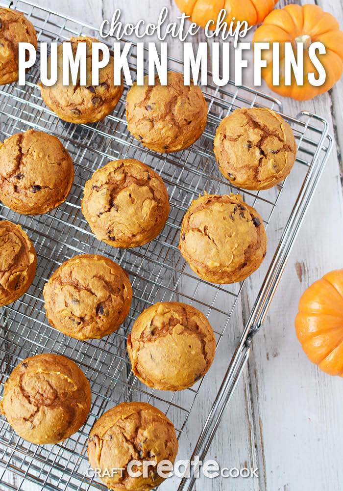 With only 6 ingredients, you cannot go wrong with these simple chocolate chip pumpkin muffins!