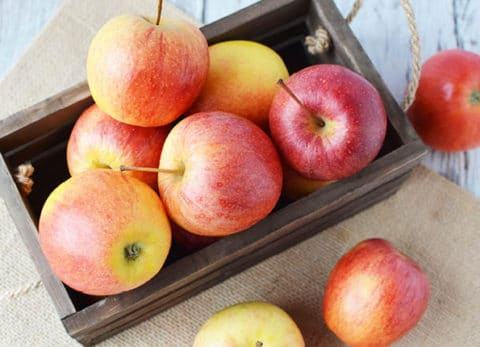 Don't hibernate when the cooler weather comes! Take advantage of the cooler weather and changing seasons and go on an apple picking date!