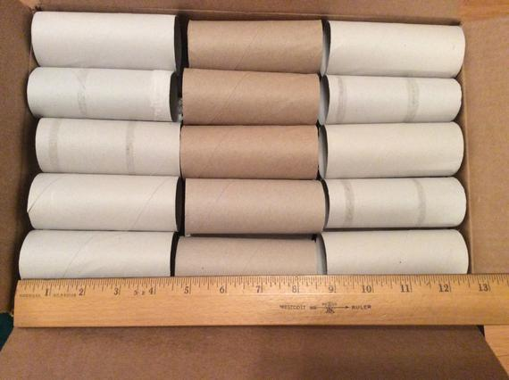 30 Toilet paper tubes great for school or camp craft projects or garden plant starters