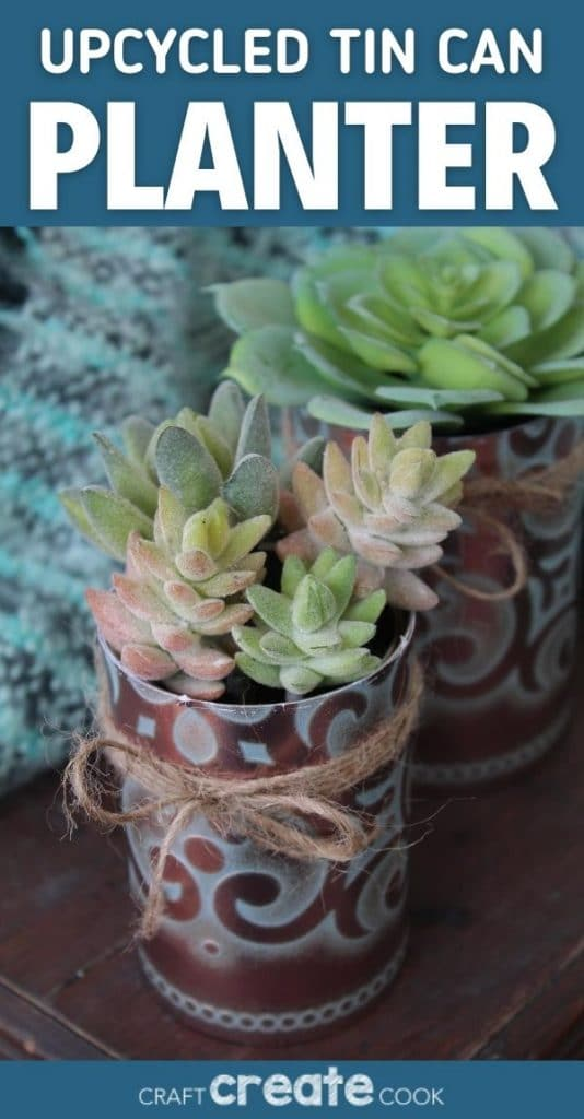 Succulents in copper planters